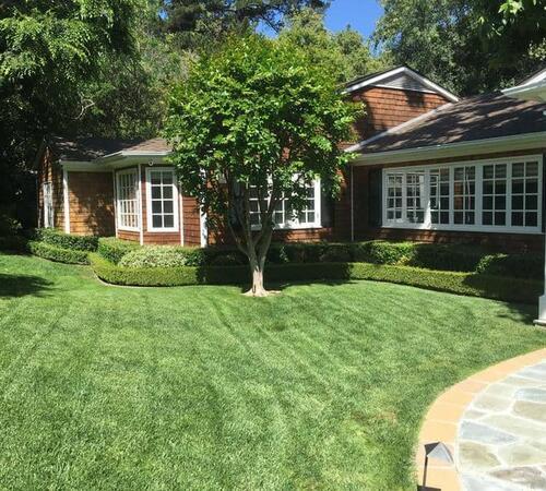 Landscape maintenance in Beverly HIlls
